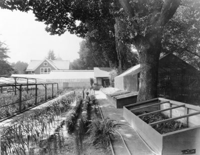 Nursery in Capitol Park early 1900s