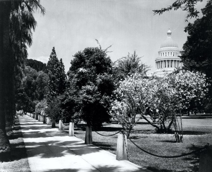 Capitol Park in 1900s